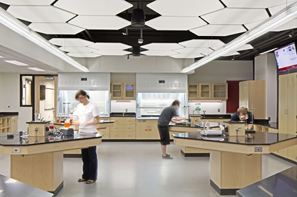 Life science labs in the renovated Brace Laboratory are designed to allow maximum student collaboration.